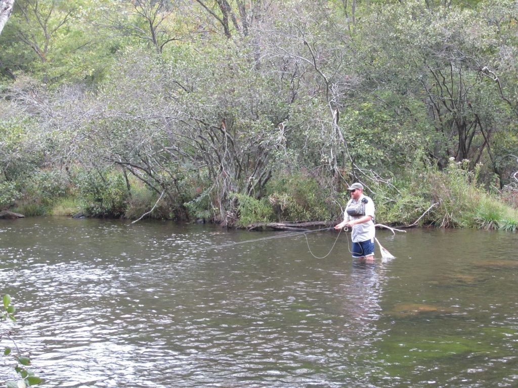 Fly fishing oklahoma for trout striper and bass for Fly fishing oklahoma
